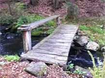 leadership_coaching_bridge